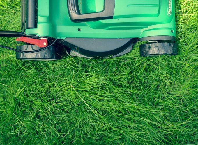 Využijte posekanou trávu ku prospěchu zahrady. Poradíme vám