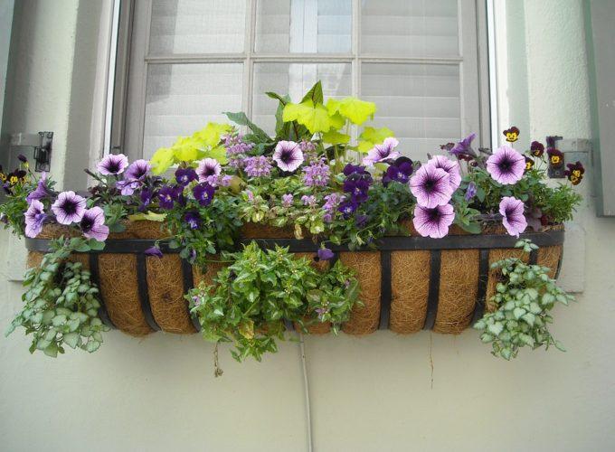 Jak si na jaře ozdobit okna